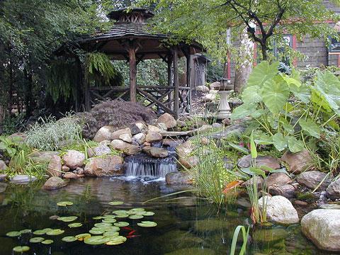 Gazebo, fish pond by SpecFin