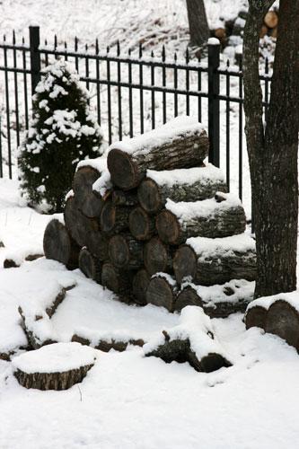 snow 1-20-2009