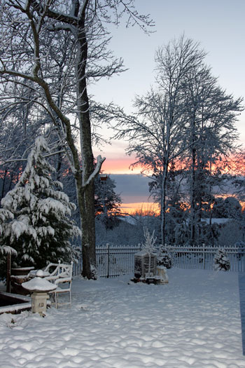 a view from by backyard