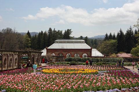 Conservatory at Biltmore Estate