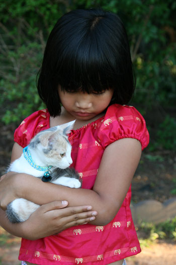 Little Miss with a cat